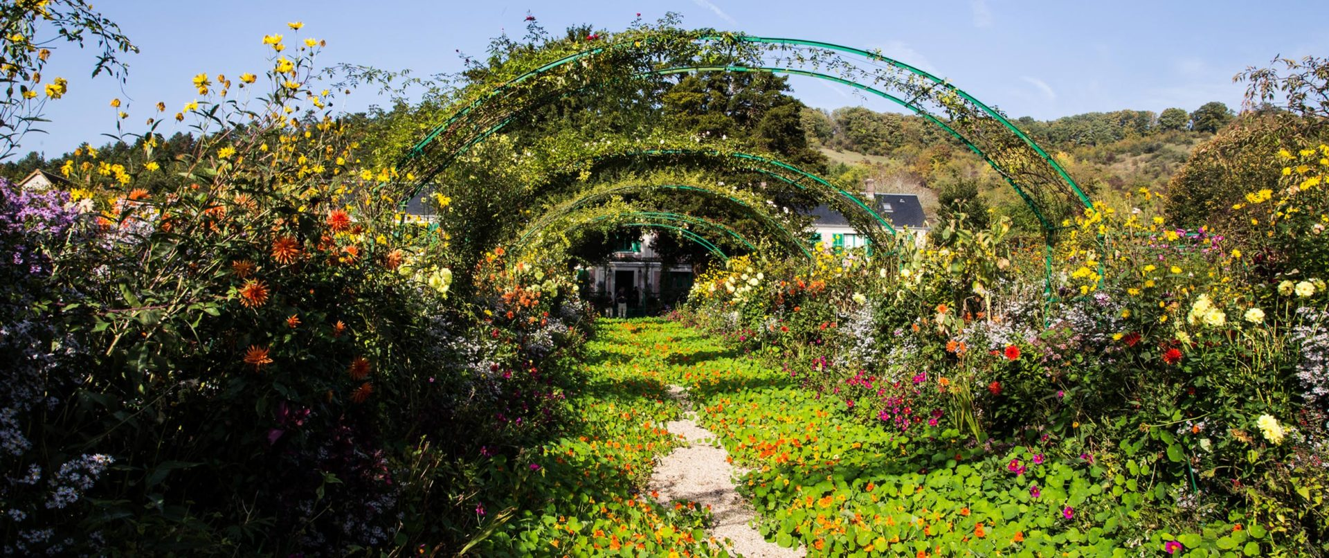 monet-garden-tour-private-guided-experience